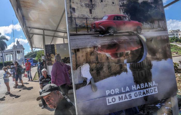 A las paradas de B y 23 y la de 29 entre F y G (nuevas) en el Vedado les arrancaron la gráfica por los 500 años de La Habana. Foto: Ariel Cecilio Lemus /Granma